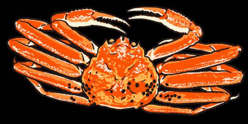 蟹 イラスト