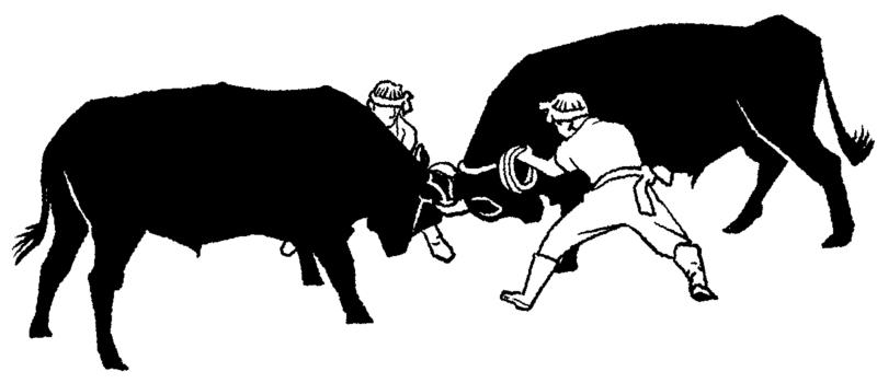 隠岐の島 牛付き 伝統行事 闘牛 牛 イラスト 干支 丑年 うし年