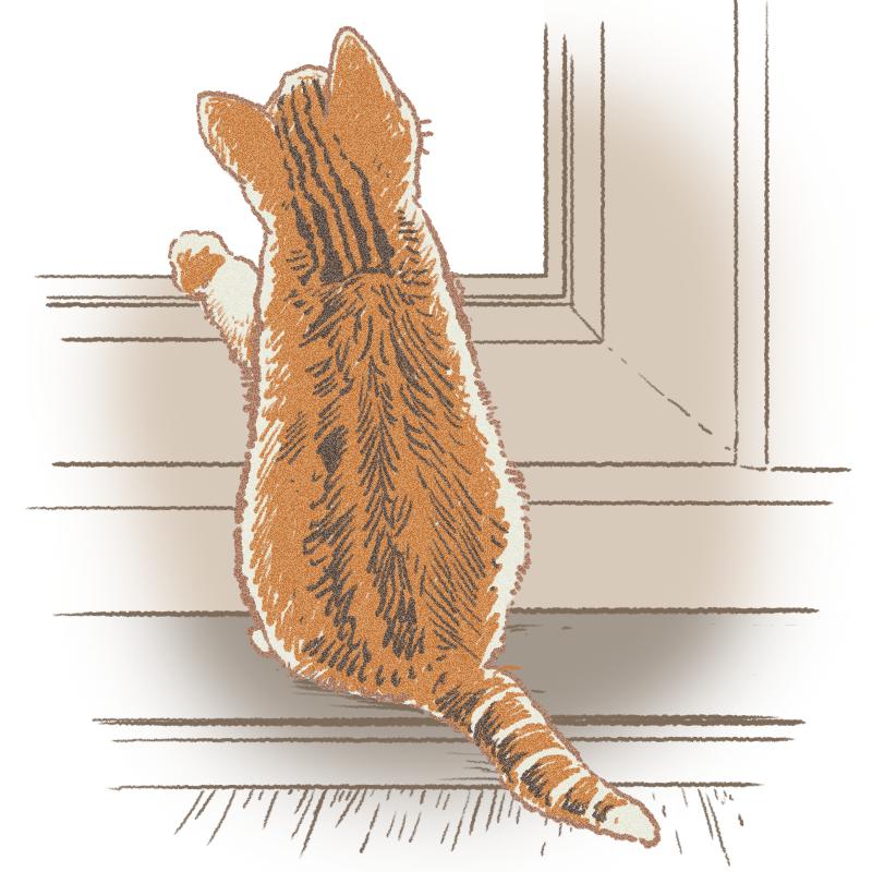 後ろ向きの子猫のイラスト腕あり