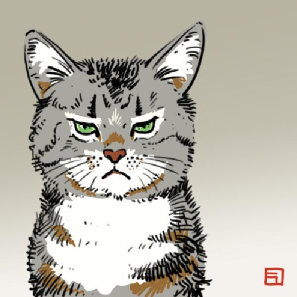 不機嫌な猫のイラスト