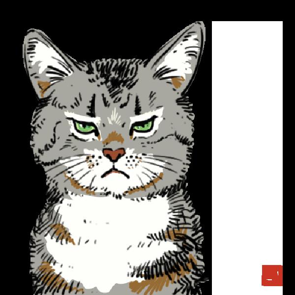 不機嫌な猫のイラスト(背景透明)