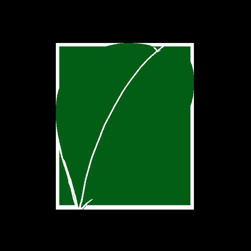 椿の葉のイラスト