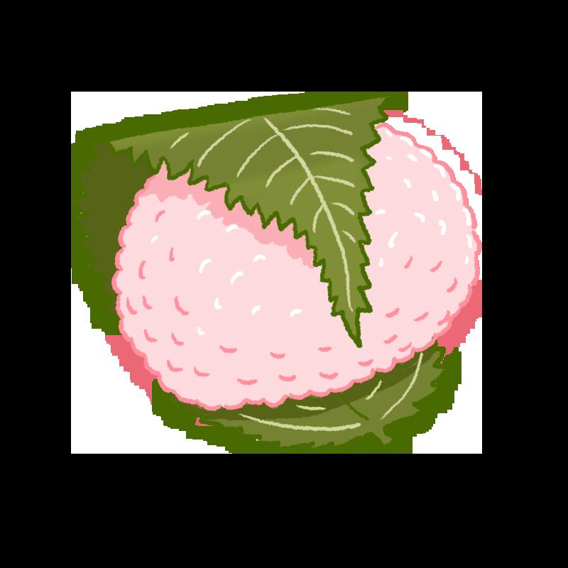 桜餅(道明寺・関西風)のイラスト