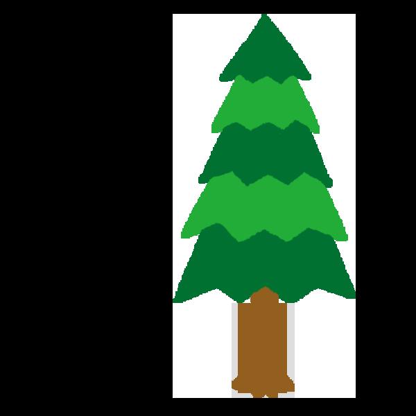 杉の木のイラスト 花粉なし