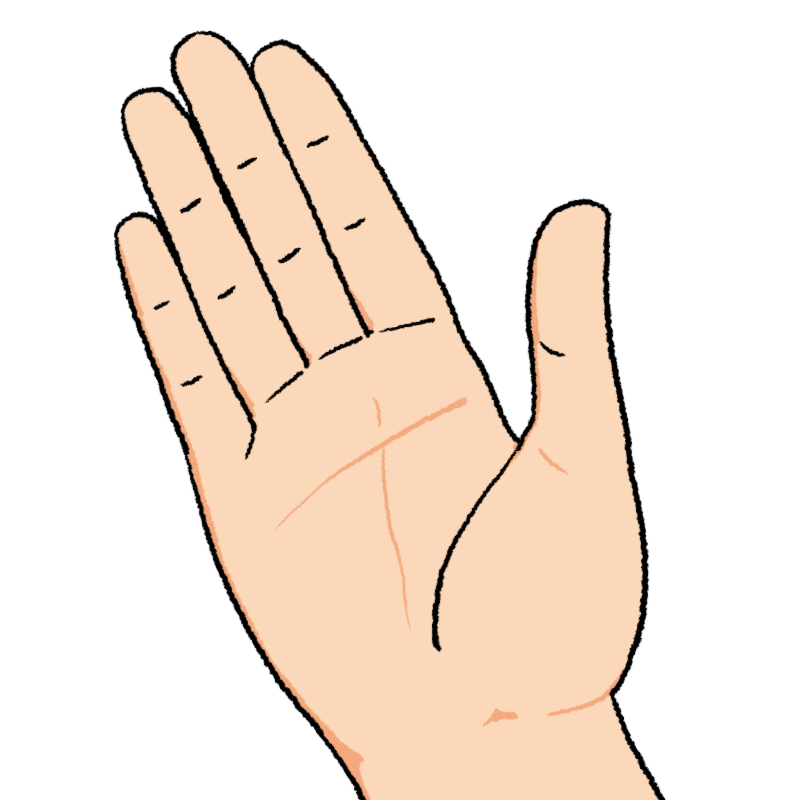 手のひらのイラスト(右手)